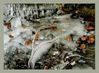 """Anka """"Zamrożony Jawornik"""" (2004-01-08 21:25:15) komentarzy: 26, ostatni: wiem rubi, wiem... :)"""