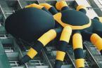 """karoten """"powrót pająka zwanego Oskarem"""" (2004-03-03 21:54:55) komentarzy: 13, ostatni: A ja mieszkam w Warszawie i nie widziałem tego pająka. Świetna robota. Pozdrawiam."""