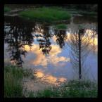 """algernon """"Izera"""" (2004-03-13 22:06:58) komentarzy: 32, ostatni: aż mi zabrakło słów , pyszneeeeeee"""