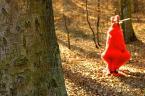 """rojo """"Co w lesie piszczy?"""" (2004-04-02 11:06:50) komentarzy: 12, ostatni: oj coś kombinujesz rojo :) za dużo pnia na pierwszym, mogłoby być niezłe, ale trochę z kadrem nei trafiłeś"""