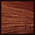 """algernon """"01"""" (2004-04-23 17:31:16) komentarzy: 11, ostatni: Fajny pomysl,calkiem dobra abstrakcja Ci wyszla.:-)) Tech.b.dobre !"""