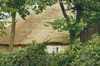 """Janusz Z Sawicki """"Wieś polska..."""" (2004-04-28 12:17:57) komentarzy: 5, ostatni: Gdyby było większe i ostrzejsze...Ten tytuł zupełnie nie pasuje..."""