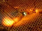 """1852m """"płynne srebro"""" (2004-08-19 20:30:35) komentarzy: 15, ostatni: wyjaśniam:)to błyszczace to kropla srebra ok.1000 stopni ciepła:)więc jest płynna:)"""