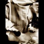 """pomylone-misie """"ten kot to genjusz empatji !"""" (2004-08-31 15:49:51) komentarzy: 25, ostatni: tak mi dobrze tak radośnie bo mam spokooj"""