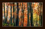 """Wołodytjowski """"Pochód jesieni"""" (2004-09-16 01:50:56) komentarzy: 39, ostatni: Oj, kolory bardzo mi się podobają."""