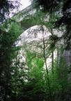 """rembrant """"Akwedukty Północy"""" (2004-11-01 21:29:03) komentarzy: 2, ostatni: beznadzieja, sorry"""