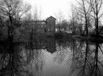 """albert broszka """""""" (2004-11-12 11:21:28) komentarzy: 2, ostatni: ładny kadr, dobre zdjęcie...."""