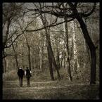 """DELF """"razem - przez zycie"""" (2004-11-15 22:39:08) komentarzy: 70, ostatni: wiesz, mam dwa spojrzenia ... jedno: iście ramię w ramię także przez jesień (bardziej ponure dni), co jest trudniej ale i piękniej, niż przez wiosnę i lato ... Drugie: spóźnieni kochankowie ... odnaleźli się w jesieni swojego życia."""