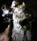 """igga """"oddycham tobą"""" (2004-11-24 11:36:14) komentarzy: 13, ostatni: znam zapach takich drzew na pamięć w b/w chyba bardziej mi się podoba"""