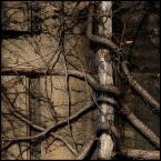 """kiwer """".biourbanizacja."""" (2005-01-03 12:22:21) komentarzy: 28, ostatni: !!!"""