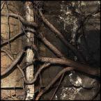 """kiwer """".symbioza."""" (2005-01-08 12:06:21) komentarzy: 30, ostatni: + !!"""