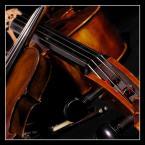 """Robert-pl """"---"""" (2005-02-04 18:31:12) komentarzy: 16, ostatni: Pięknie pokazane!"""