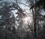 """1852m """"zimowe:)"""" (2005-02-05 18:27:40) komentarzy: 2, ostatni: miłe dla oka, fajny zimowy widoczek:)"""