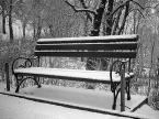 """Janusz Z Sawicki """"Ławka zimą"""" (2005-02-06 10:27:53) komentarzy: 8, ostatni: Rewelacja dla mnie równiez ,"""