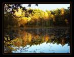 """Anavera """"Leśne jezioro albo gdy natura przegląda się w swoim zwierciadle."""" (2005-02-18 07:20:56) komentarzy: 29, ostatni: ok"""