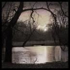 """DELF """"spragnione"""" (2005-02-26 16:37:55) komentarzy: 38, ostatni: piękny monochrom z lawendowym dopełnieniem"""