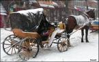 """SławeK WaW """"Gdy zima zaskoczy na dobre!"""" (2005-03-14 22:50:11) komentarzy: 6, ostatni: dobrze utrafiłeś z czasem , że śnieg widać tak a nie inaczej :)"""