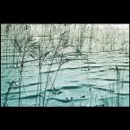 """AdamOre """"Morze..."""" (2005-03-18 09:38:42) komentarzy: 26, ostatni: ladnie, spokojnie."""
