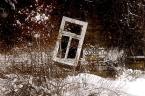 """DiogenesPies """""""" (2005-03-24 07:47:04) komentarzy: 6, ostatni: ja jestem na nie"""