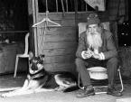 """Tade """"Stary czlowiek i pies"""" (2002-12-09 21:44:50) komentarzy: 8, ostatni: świetne !"""