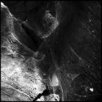 """kiwer """""""" (2005-03-31 23:49:49) komentarzy: 15, ostatni: :) podobna się"""