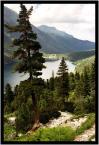 """Adam Skotarczak """"Morskie Oko"""" (2005-04-17 21:32:19) komentarzy: 4, ostatni: uciąłeś drzewo.. i cos kiepsko z jakościa..."""