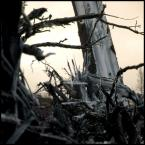 """kiwer """".frozen."""" (2005-04-21 21:36:48) komentarzy: 20, ostatni: no,ładne"""