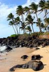 """andrzejbur """"Hawaje"""" (2005-05-06 15:47:02) komentarzy: 9, ostatni: calkiem fajne"""