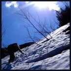 """algernon """"pożegnanie z zimą"""" (2005-05-23 11:53:00) komentarzy: 4, ostatni: hehe - czary mary takie :P"""
