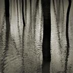"""drax """"* * *"""" (2005-06-13 09:45:05) komentarzy: 62, ostatni: swietne. osobicie bardzo lubie takie wodne refleksje :)"""