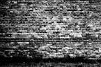 """CiasteczkowyPotwór """"The Wall"""" (2005-07-03 20:02:03) komentarzy: 6, ostatni: taki morek, taki odpowiedni na tlo jakiegoś interesujacego zdjecia"""