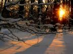 """ziczak """"Zima w Reptach"""" (2005-08-03 10:14:56) komentarzy: 16, ostatni: to tylko zabawa z tymi ocenami, ale jeśli Cię to emocjonuje....... fotka ma fajne światło pozdr. :)"""