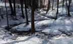 """Antoni Dziuban """"nad potokiem"""" (2003-02-02 18:11:15) komentarzy: 25, ostatni: Nie ma jednak jak zima !!!!!!!!!!!    Piękne zdjęcie."""