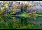 """amator_sliwek """"jesienna symetria"""" (2005-11-03 19:43:46) komentarzy: 21, ostatni: ładne..."""