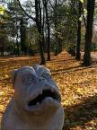 """tomello """"Jesienny spacer z pieskiem..."""" (2005-11-29 19:39:48) komentarzy: 27, ostatni: tej egzekucja mądralo... sam żeś gniot i do tego młot!"""