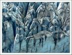 """Marcin Z """"Lód"""" (2005-12-11 18:42:02) komentarzy: 12, ostatni: tylko ludzi brak"""