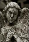 """irmi """"anielski spokój"""" (2006-01-18 16:09:28) komentarzy: 3, ostatni: ciekawe zdjęcie, pokazujące że wszystko co ziemskie przemija, a czas nieubłaganie odciska swoje piętno. pozdrawiam"""