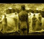 """AlinaJJJ """"Alien"""" (2006-02-12 21:11:01) komentarzy: 123, ostatni: inne"""