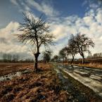 """MikE_ZorbA """"wiosna?"""" (2006-02-27 23:55:45) komentarzy: 28, ostatni: kompozycja mi sie podoba :)"""