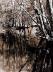 """sebol6 """"Myśla - zabrakło kolorów"""" (2006-03-05 19:58:02) komentarzy: 38, ostatni: Zimno....."""
