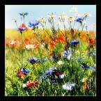 """sebol6 """":) dla tych co nie tracą nadziei :)"""" (2006-04-01 15:24:48) komentarzy: 138, ostatni: przez pola i łąki""""... bo tak mnie się ckni za ciepełkiem :)"""