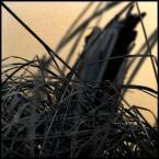 "kiwer """" (2006-04-05 19:05:17) komentarzy: 3, ostatni: diablo 3"