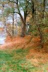 """Wilkowaty """"Kurhan"""" (2006-04-10 16:28:40) komentarzy: 33, ostatni: w rameczki z lekka zmiana kolorow i piekny obraz"""