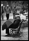 """tasso """"Samotność z parasolem"""" (2006-04-24 01:34:38) komentarzy: 21, ostatni: W jakim sensie jedno? Jedno street foto czy jedno dobre w całym portfolio? :)"""