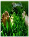 """eclecte """"a trawa zielona a oczy czerwone"""" (2006-05-14 14:04:24) komentarzy: 19, ostatni: trawka :))"""