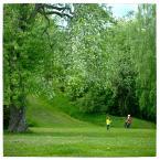 """MonikaMM """"Na zielono"""" (2006-06-05 23:30:59) komentarzy: 10, ostatni: piękne kolory, uwielbiam taka zieleń."""