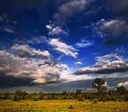 """tomek77 """""""" (2006-06-15 09:10:28) komentarzy: 92, ostatni: oj dzieje sie dzieje na niebie ... pieknie ... :)"""