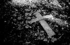 """DiogenesPies """"RIP"""" (2006-06-16 09:49:39) komentarzy: 9, ostatni: ■ (jesien sredniowiecza) prze-mijanie"""