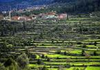 """procyon """"W Pamfilii"""" (2006-06-16 23:36:25) komentarzy: 23, ostatni: niesamowite pola , trochę jak ryżowe, kolory +++"""