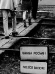 """Wojtek Brzoska """""""" (2006-10-03 16:05:10) komentarzy: 6, ostatni: Absolutnie NIEDOCENIONE !!!!!!!!!!!!!!!!"""